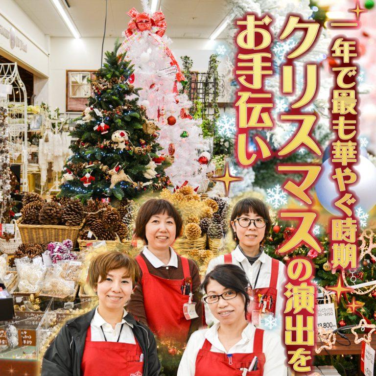 一年で最も華やぐ時期クリスマスの演出をお手伝い