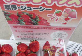 2月1日(土)どきどき苺まつり開催
